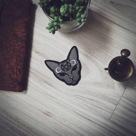 Naszywka Cat (1)